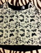 koszulka w motyle