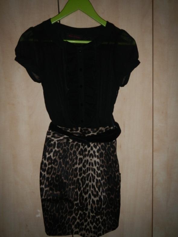 Sukienka panterka z zabotem S...