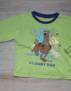 Scooby Doo bluzeczka zielona 104 110...