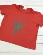 Tshirt Albania R 3 L...