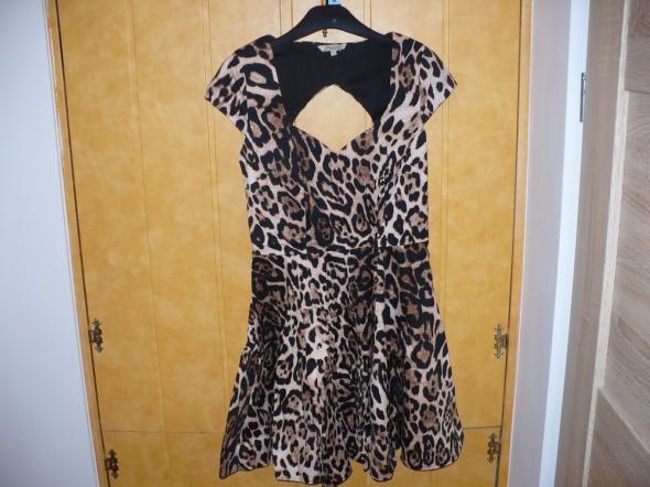 piękna sukienka panterka...