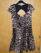 piękna sukienka panterka
