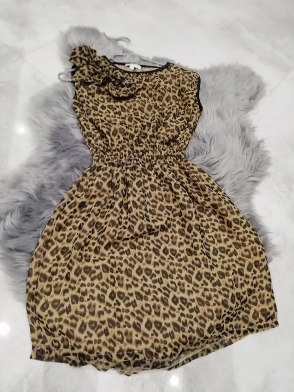 sukienka w panterkę rozmiar XS...