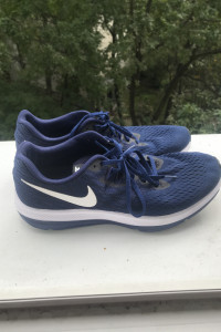 Nike zoom winflo 4...