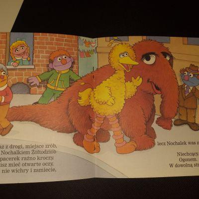 Pozostałe Ulica sezamkowa hej to ja żółtodziób książka dla dzieci