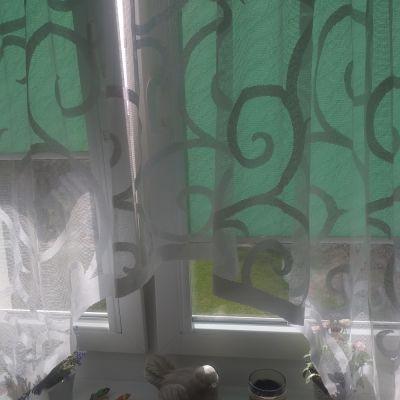 Pozostałe Firana wycinana 300x150 cm