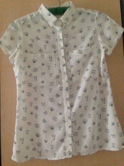 Koszule Koszula w pieski i kotki House XS S