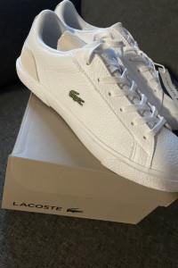 Nowe buty Lacoste