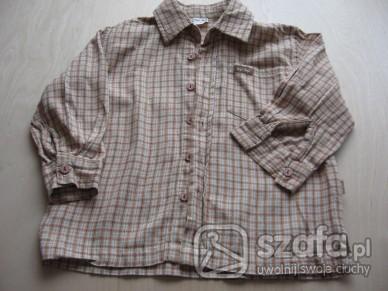 Koszulki, podkoszulki koszula