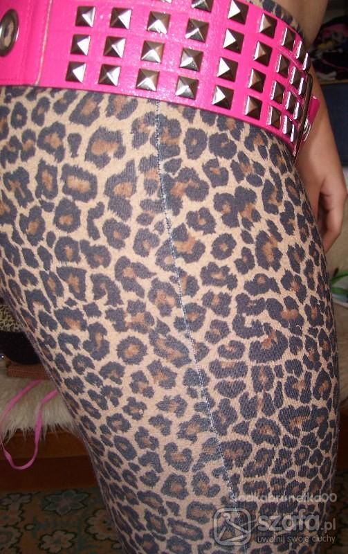 Spodnie sexy legginsy panterki
