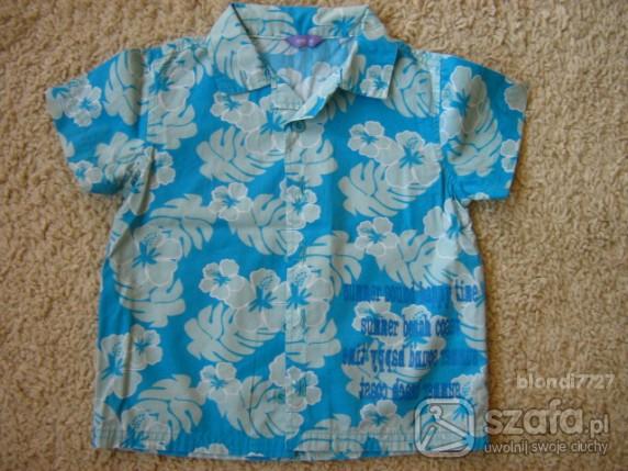 Koszulki, podkoszulki koszula hawajska