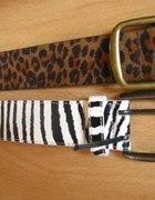 zebra panterka