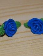 niebieskie rózyczki