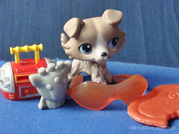 Zabawki Spaniel Littlest Pet Shop plus Dodatki