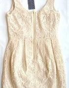 koronkowa sukieneczka HM