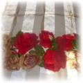 w czerwone róze