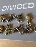 owady HM