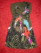 Papugi H&M motyw zwierzęcy 38 2010
