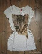koszulka bluzka kot kotek kociuś