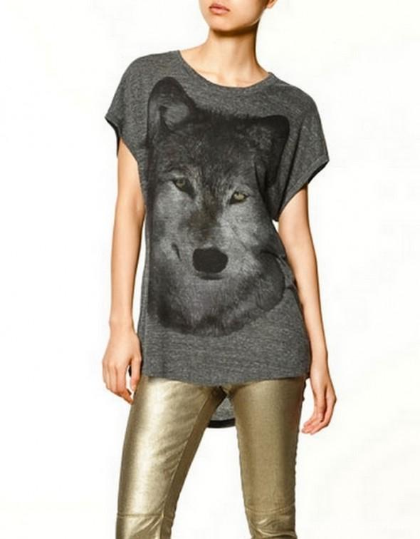 Ubrania grey wolf wilk ZARA TRF