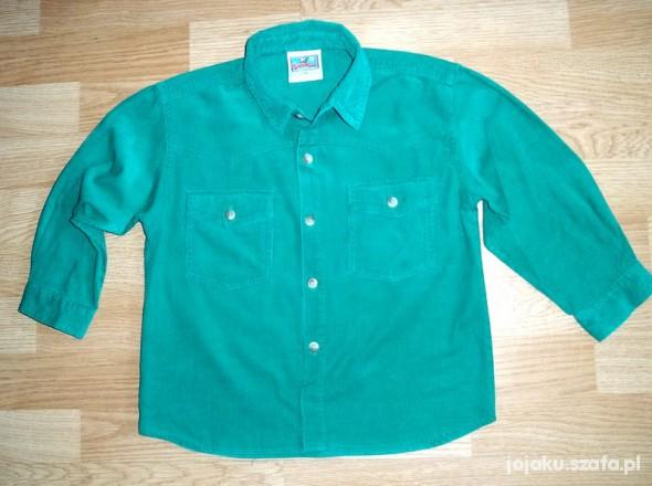 Koszulki, podkoszulki TOPOLINO 110