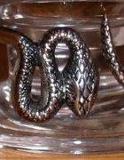 bransoletka wąż...
