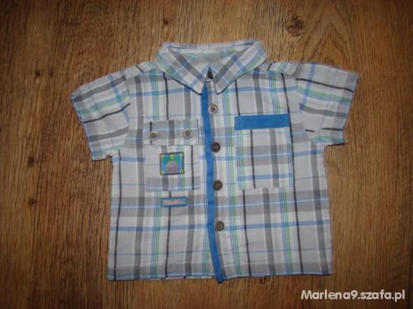 Koszulki, podkoszulki Koszula 68