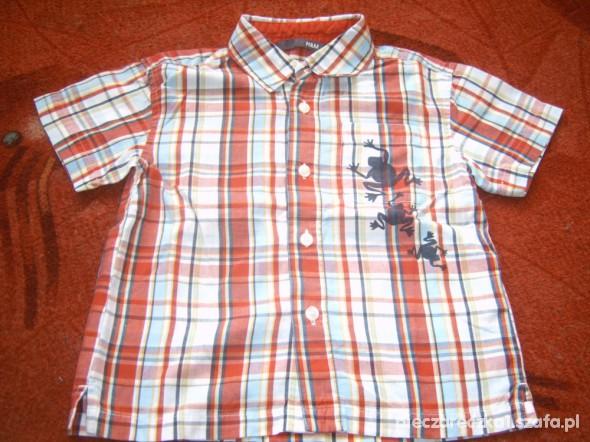 Koszulki, podkoszulki Sliczna koszula H&M