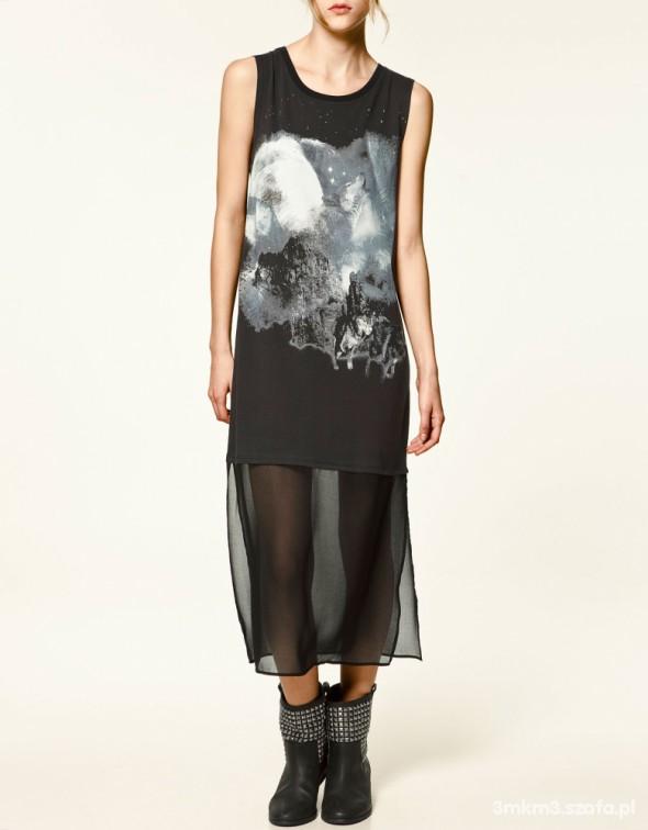 Zara sukienka wilki szyfon