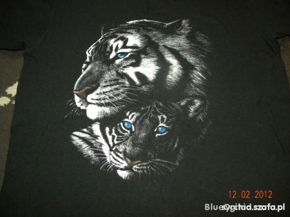 Śliczna z tygrysami