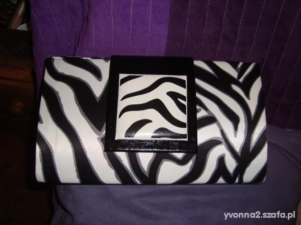 Kopertówka zebra
