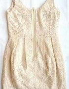 Poszukuję Sukienki z koronki nude w rozmiarze 34 6