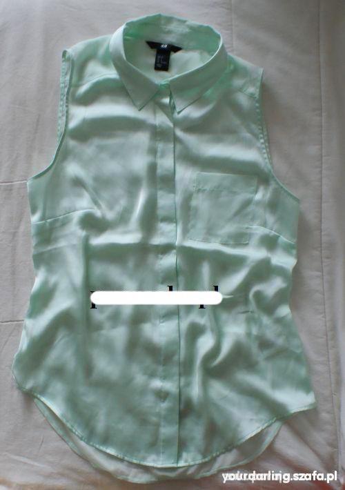 Ubrania mietowa koszula lub bluzka