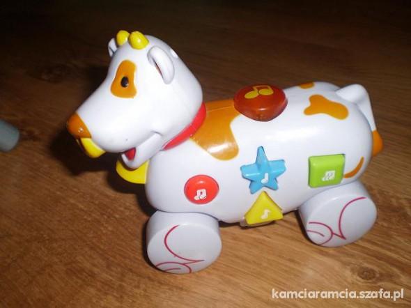 Zabawki grająca i świecąca krówka