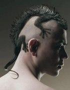 Reptile Haircut