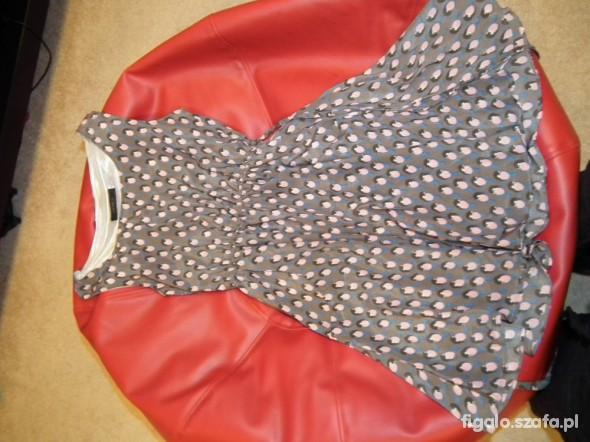 Suknie i sukienki Sukienka w ptaszki