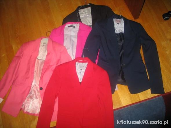 kolekcja marynarek