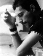 szukam Queen i Freddie Mercury