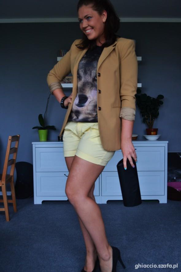 Wolf & yellow