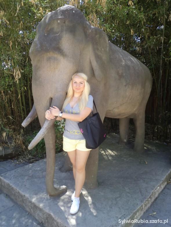 Sportowe Pobyt w Zoo