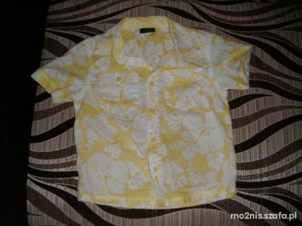Koszulki, podkoszulki Hawajska koszula Next 98 cm