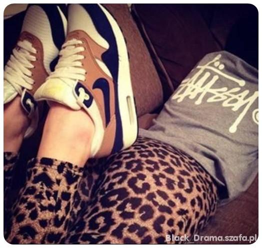 leggi leopard