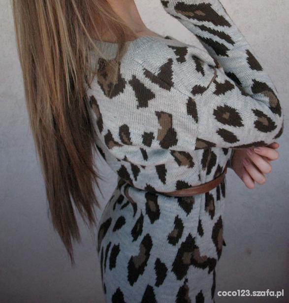 sweter panterkowy stradivarius...