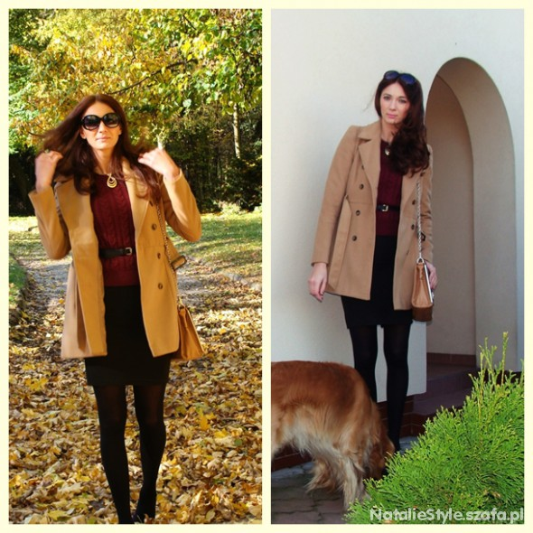 Blogerek złota jesień