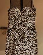 sukienka H&M 38 panterka cętki