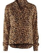 panterka leopard