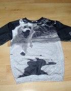 Bluza Fly Dog...