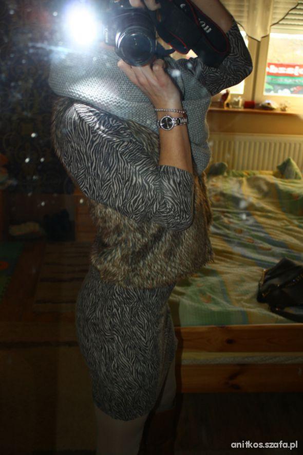 Na specjalne okazje sukienka zeberka plus futro
