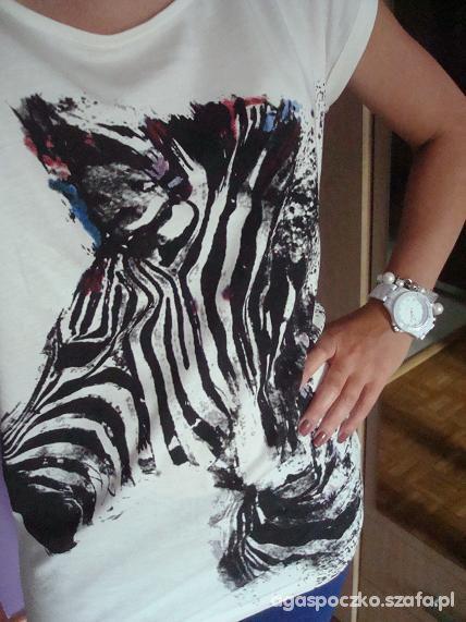 Mój styl zebra z klasą