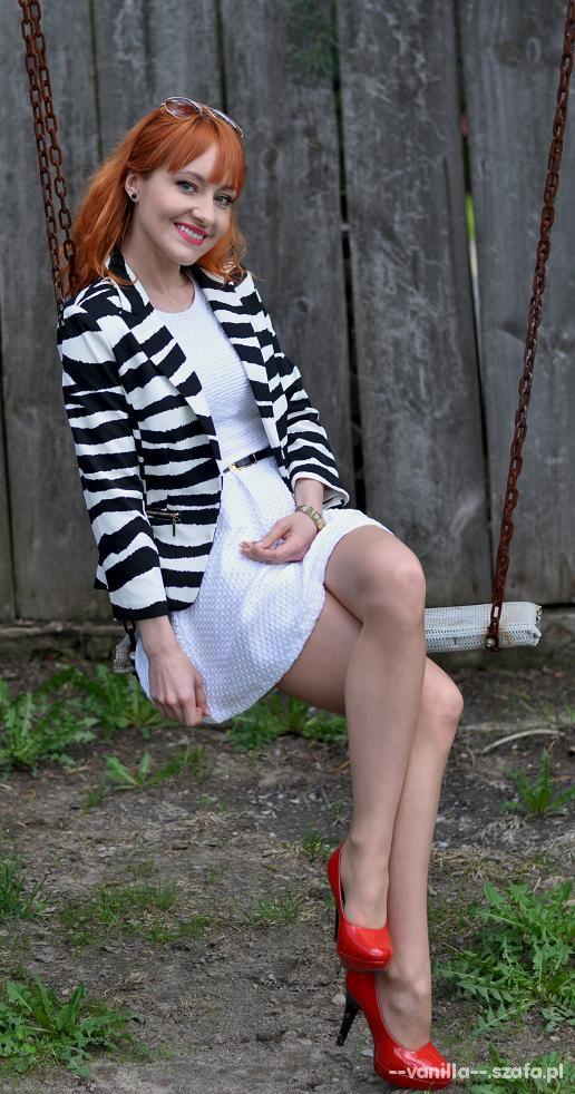 Eleganckie zebra